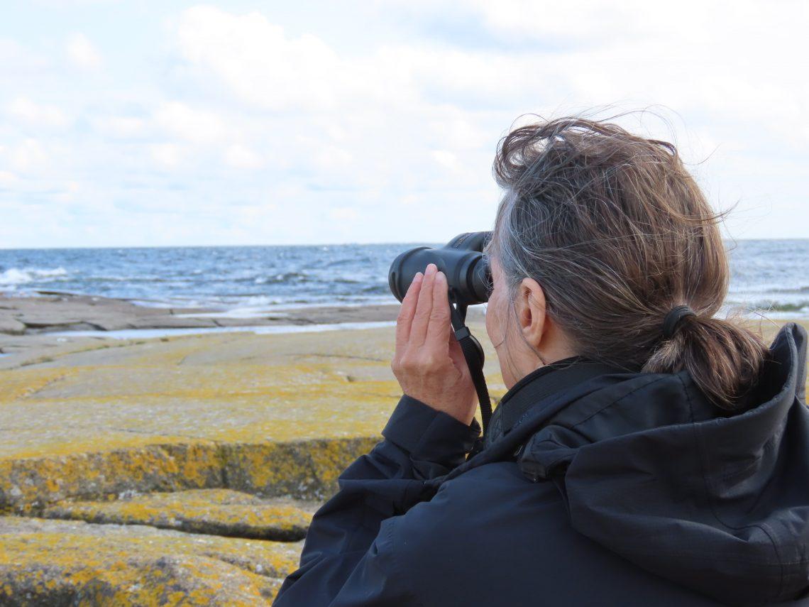 Nainen katselee lintuja kiikarilla